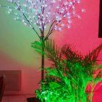 arbre lumiuneux